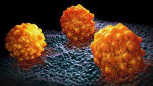Mutant Cells