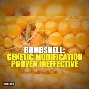 GMO Fail