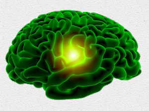 Green_Brain_Pineal_Gland