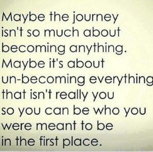 Maybe The Journey...