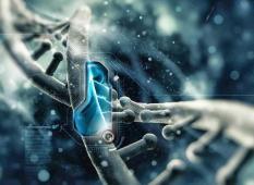 Altered DNA