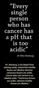 Dr Otto Warburg Quote On Cancer
