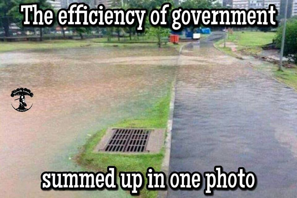 The Efficiency Of Government