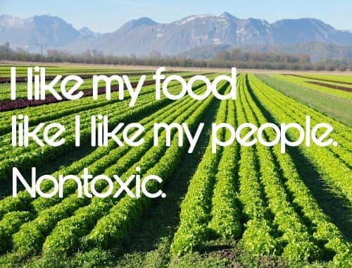 I Like My Food And People Non-Toxic