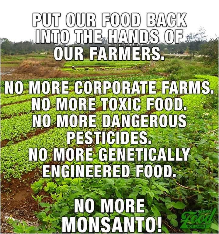 No More Monsanto