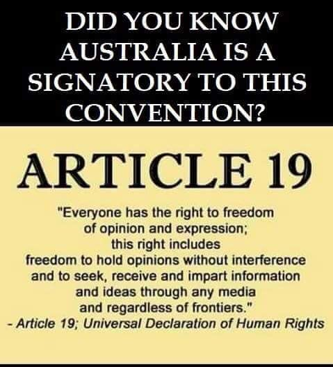 Article 19 UDHR