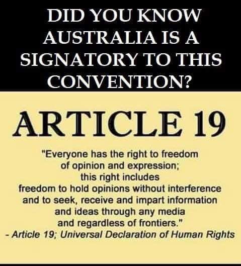 Article 19 UDHR