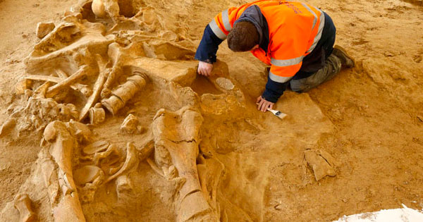 5-METER TALL HUMAN SKELETON UNEARTHED IN AUSTRALIA