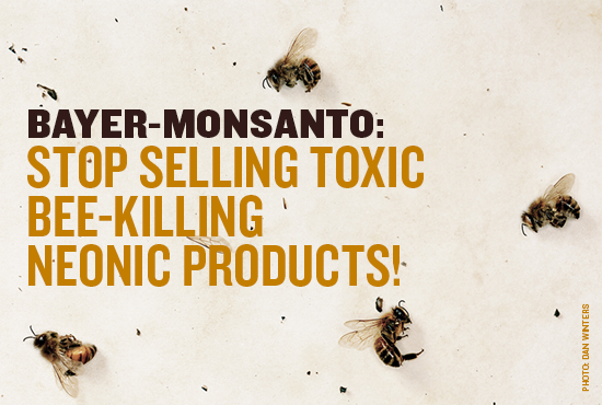 Bayer Bee Petition