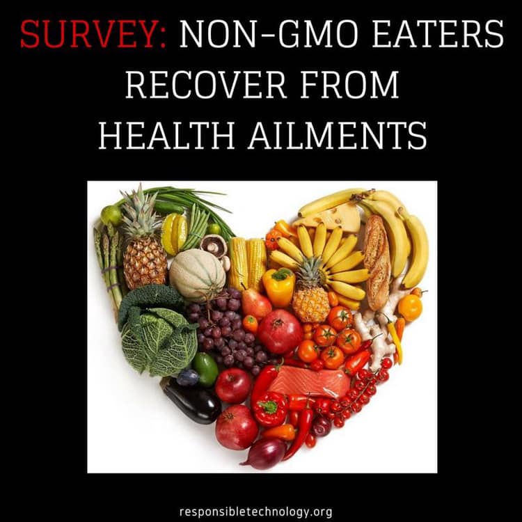 Going GMO Free Restores Health