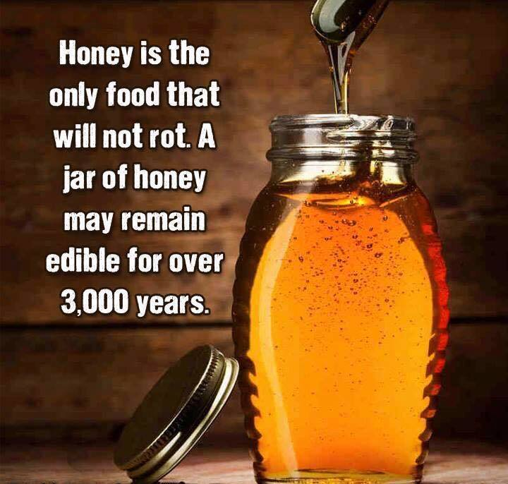 Honey Will Not Rot