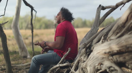Stop Adani destroying our land and our culture