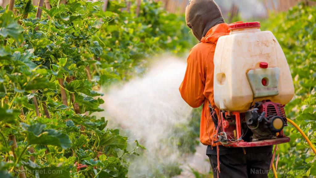 Man-Spraying-Pesticides-Crops-Farm