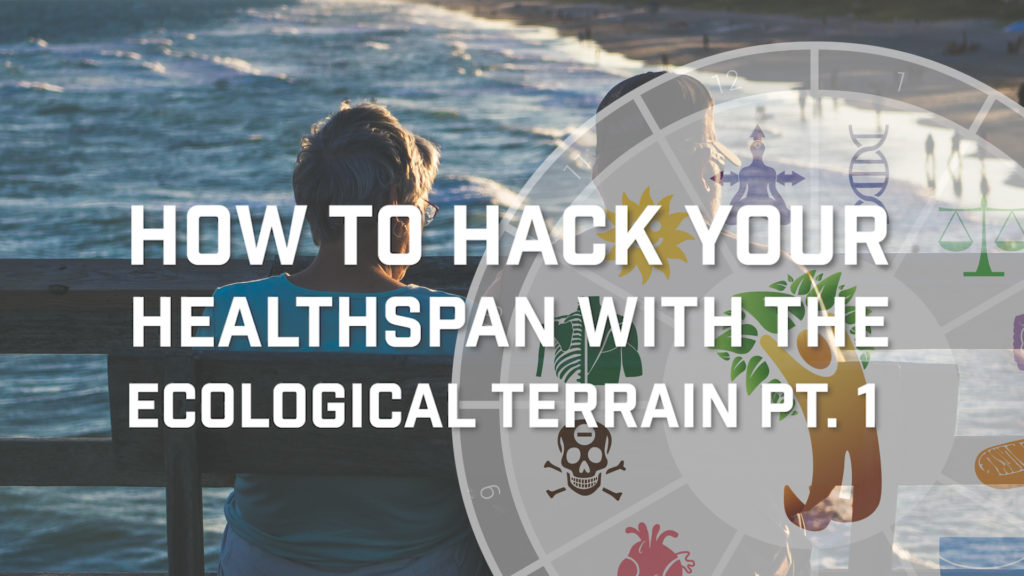 How To Hack Your Healthspan