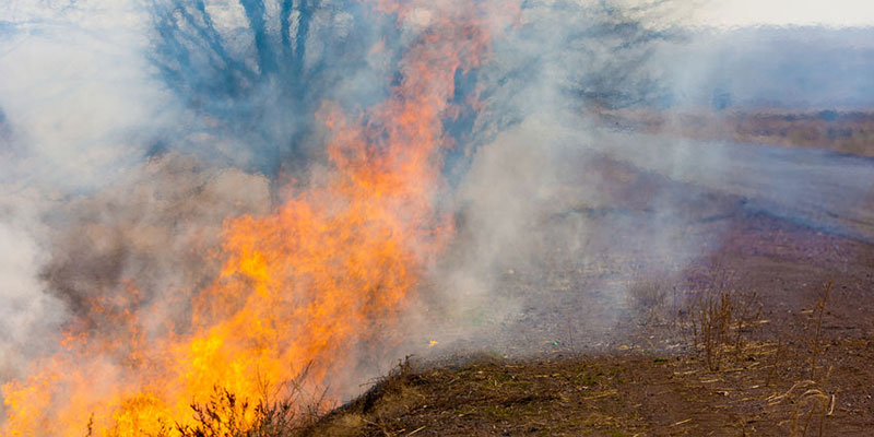 wildfires-linked-to-groundwater-depletion