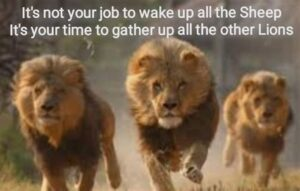 Yoiur Job Is Not To Wake The Sheep. It Is To Gather The Lions!