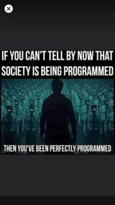 You Have Been Perfectly Programmed