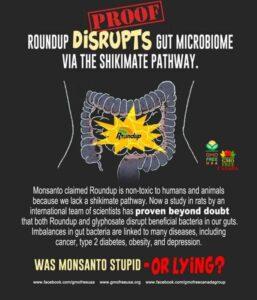 RoundUp Disrupts Metabolic Pathway