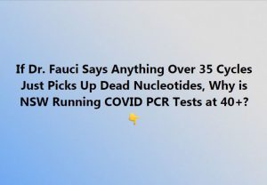 PCR Test Cycles