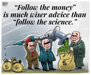 Wiser Advice