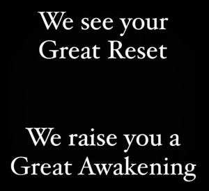 We See Your Great Reset