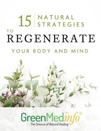 15 Natural Strategies to Regenerate Your Body and Mind
