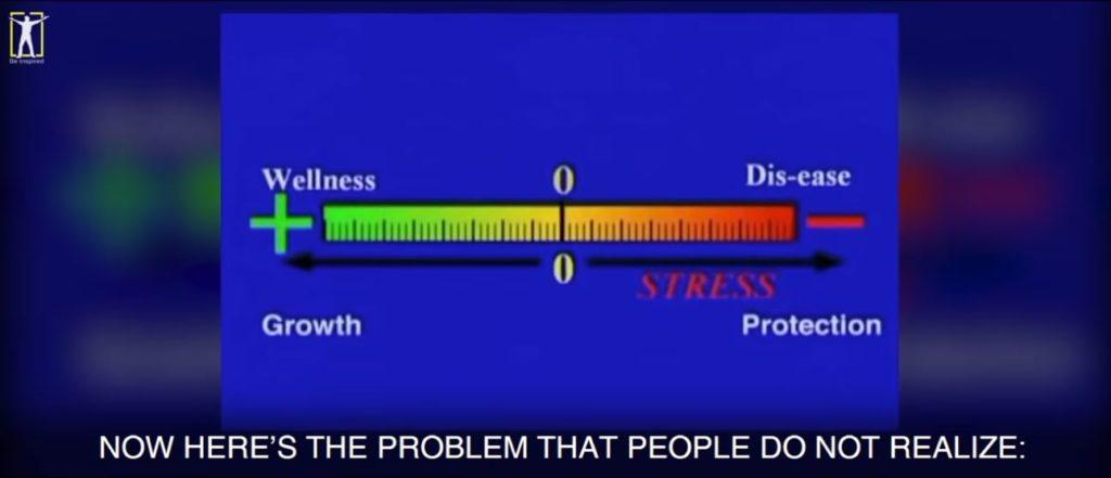 Never Get Sick Again - Dr Bruce Lipton