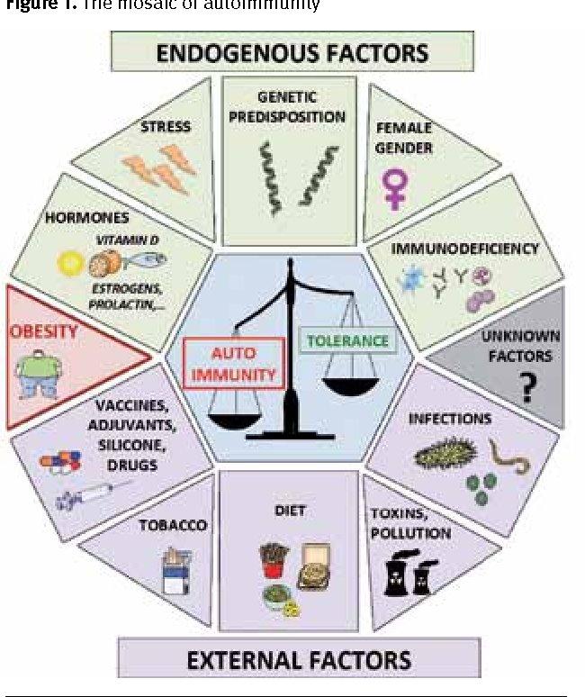 AutoImmune Factors