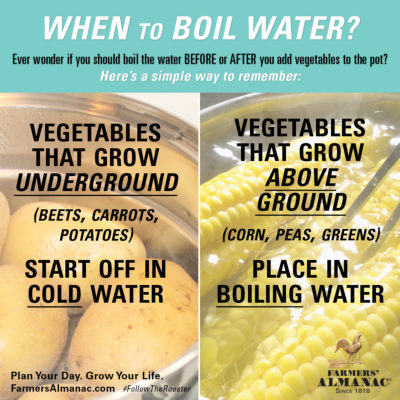 When to Boil